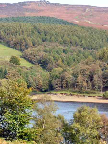 Ladybower Reservoir - Denis Eardley
